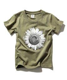 devirock/全20柄 プリント半袖Tシャツ カットソー/500878214