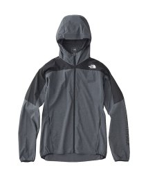 THE NORTH FACE/ノースフェイス/メンズ/TNFR SWALLOWTAIL VENT HOODIE/500884532