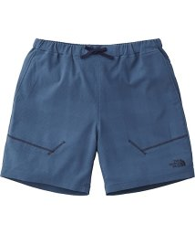 THE NORTH FACE/ノースフェイス/メンズ/VENT MESH SHORT/500884536