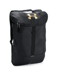 UNDER ARMOUR/アンダーアーマー/メンズ/18S UA EXPANDABLE SACKPACK/500889809