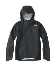 THE NORTH FACE/ノースフェイス/メンズ/APEX GTX TRAIL HOODIE/500897534