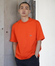 BEAMS MEN/LACOSTE × BEAMS / 別注 Tシャツ/500901936