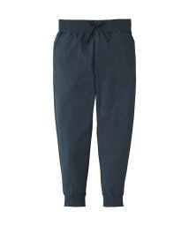 THE NORTH FACE/ノースフェイス/レディス/COLOR HEATHERED SWEAT LONG PANT/500910728