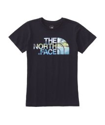 THE NORTH FACE/ノースフェイス/レディス/S/S VIEW LOGO TEE/500920165