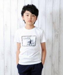 GLAZOS/フォトプリント半袖Tシャツ/500922679