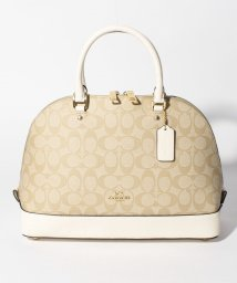 COACH/COACH OUTLET F58287 IMDQC ハンドバッグ/500906883