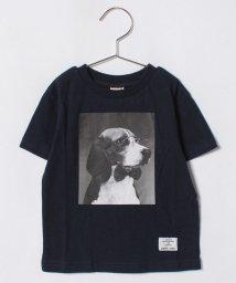 petit main/ビーグルグラフィックTシャツ/500912526