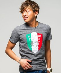 VIOLA/VIOLA【ヴィオラ】ボンディングプリント入りクルーネック半袖Tシャツ/500937832