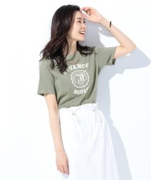 J.PRESS LADIES(LARGE SIZE)/IVY PRINT Tシャツ/500938393