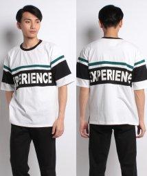 STYLEBLOCK/BIG切り替えプリントTシャツ/500914063