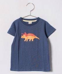 LAGOM/恐竜プリントTシャツ/500926165