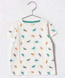 LAGOM/恐竜総柄Tシャツ/500926166