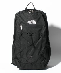 THE NORTH FACE/THE NORTH FACE(ザノースフェイス)  RODEY/500961145