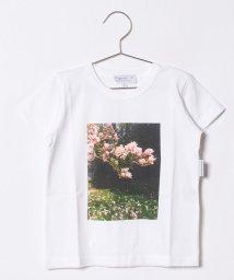 agnes b. ENFANT/NQ78 E TS Tシャツ/500957942