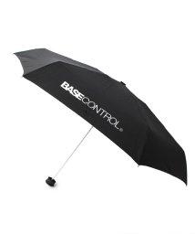 BASECONTROL/傘 折りたたみ傘 HUS. ハス スマートデュオ 別注/500988174