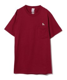 Ray BEAMS/JACKSON MATISSE / BEAR ポケット Tシャツ/500934840