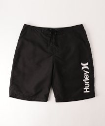 BEAUTY&YOUTH UNITED ARROWS/<Hurley> OAO 2.0 BDST 21/水着/501003142