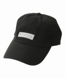 JOINT WORKS/SUPERTHANKS SILICON LOGO CAP/501003497