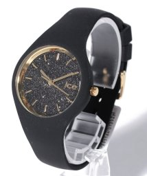 ICE watch/ICE-WATCH 時計 アイスグリッター  ICEGTBBKSS15/500997342