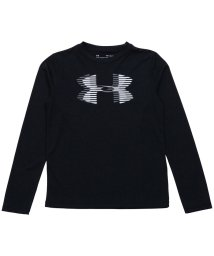 UNDER ARMOUR/アンダーアーマー/キッズ/18S UA TECH BIG LOGO LS/501012650
