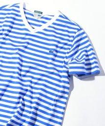 SHIPS JET BLUE/LACOSTE×SHIPS JET BLUE: 別注 ベーシックVネックTシャツ/500864154