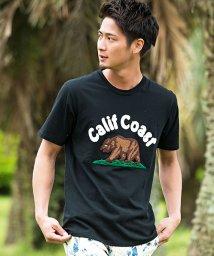 CavariA/CavariA【キャバリア】サガラワッペンクルーネック半袖Tシャツ/501025664