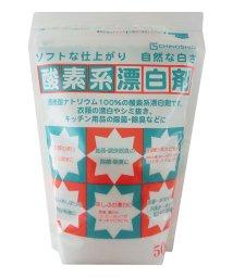 BACKYARD/地ノ塩 CHINOSHIO #811169 酸素系漂白剤500g/501038104