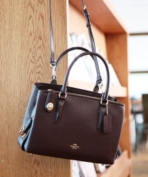COACH/COACH Brooklyn 28 Carryall/501037091