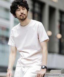 nano・universe/【WEB限定商品】∴ピグメント加工クルーネックTシャツ/501052364