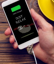 RELAX/〈RELAX/リラックス〉ZOO CORD/ズーコード/501051226