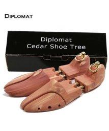 BACKYARD/ディプロマット Diplomat #diplomat02 ヨーロピアンシダーシュートゥリー/501038330