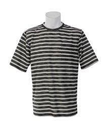 Alpine DESIGN/アルパインデザイン/メンズ/胸ポケットTシャツ スラブ/501059184