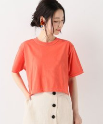 SLOBE IENA/FRUIT OF THE LOOM クロップドTシャツ◆/501060044