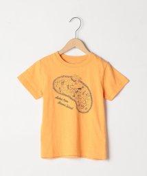 coen/【coen キッズ 】HAWAII  MAPTシャツ (100~130cm)/501055643
