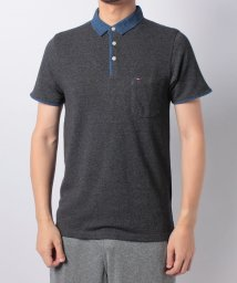 TOMMY JEANS/THDM ECL BASIC SL POLO S/S 16/501062776