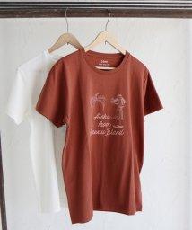 coen/HAWAII Tシャツ II/501055639