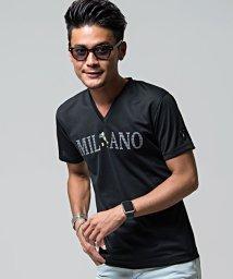 VIOLA/VIOLA【ヴィオラ】プリント入りVネック半袖Tシャツ/501081344