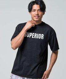 CavariA/CavariA【キャバリア】SUPERIORビッグペイントバックプリントクルーネック半袖Tシャツ/501081350