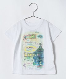 BREEZE / JUNK STORE/CS FESTIVAL Tシャツ/501078395