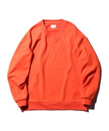 BEAMS OUTLET/【WEB限定】BEAMS / NEW STANDARD Vネック スウェット/501089783