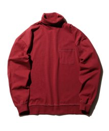BEAMS OUTLET/【WEB限定】BEAMS / NEW STANDARD ルーズ タートルネック/501089784
