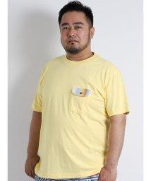 GRAND-BACK/【大きいサイズのメンズ服・グランバック】Ocean Pacific (オーシャンパシフィック) スノーウォッシュバックプリント半袖Tシャツ/501095436