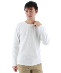 TAKA-Q/ストライプジャガードクルーネック長袖Tシャツ/501097813