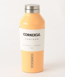 BEAUTY&YOUTH UNITED ARROWS/【国内exclusive】<CORKCICLE>CANTEEN 270ml ウォーターボトル/501115786
