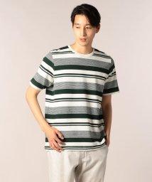 GLOSTER/シジラボーダーTシャツ/501120060