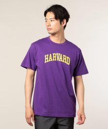 FREDYMAC/HARVARD purple Tシャツ/501120074