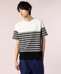 GLOSTER/ハニカム転換ボーダーTシャツ/501120089