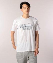 FREDYMAC/ブタバックスタイルTシャツ/501120356