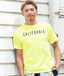 CavariA/CavariA【キャバリア】サガラ刺繍デザインクルーネック半袖Tシャツ/501123719