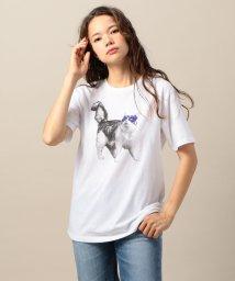 BEAUTY&YOUTH UNITED ARROWS/<Paratiisi>MASK キャットTシャツ/501126870